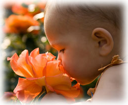 Baby with Orange Flower